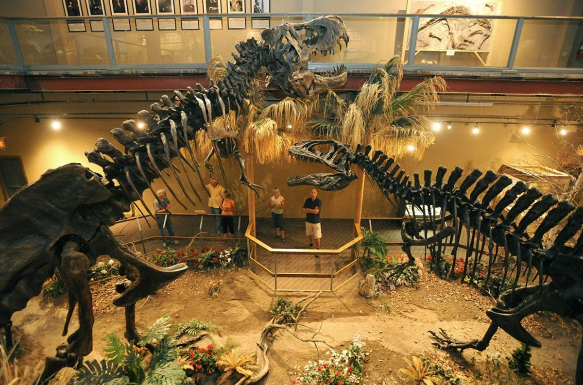 Student Trip To Glendive Creationist Museum Canceled Over