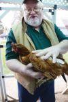 Exotic chicken breeder challenges Deer Lodge poultry ordinance