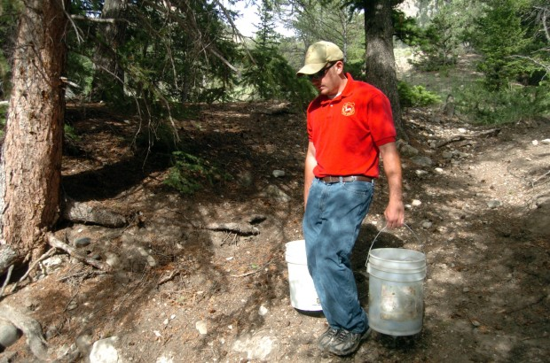 Yellowstone Cutthroat Returned To Clarks Fork System