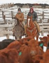 Meal Time: When weather's cold feedlots feed lots