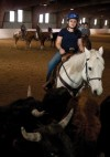 WYO041712-horse1.jpg