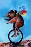 Pika Pedals Petals