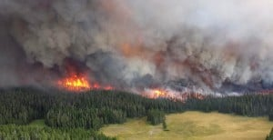 Heavy rain helps cool Yellowstone wildfires