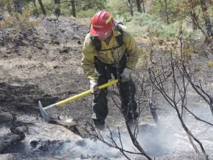 Blaze's quick growth concerns firefighter