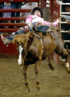 California cowboy rides to top score in bareback