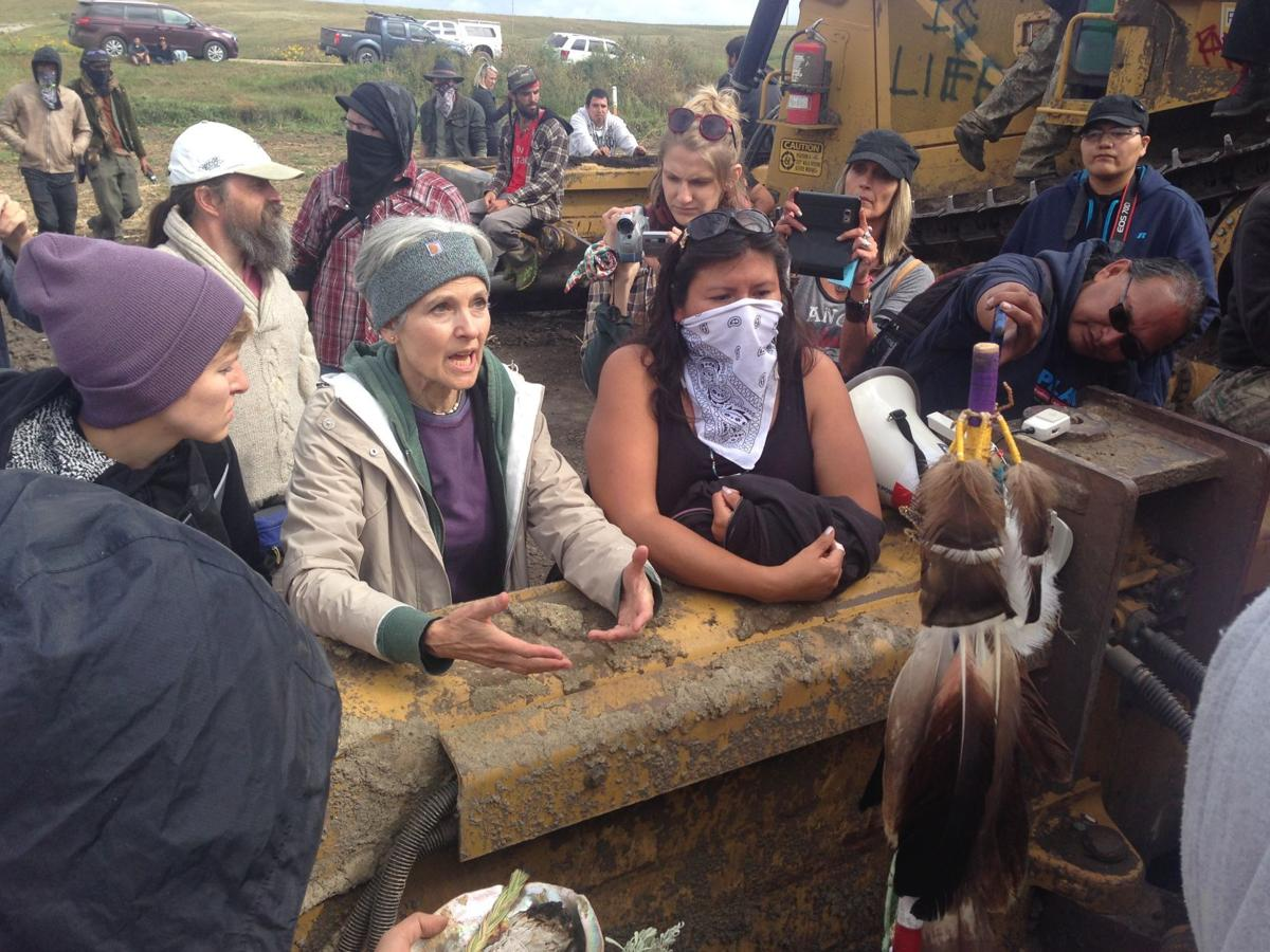 Image result for jill stein dapl