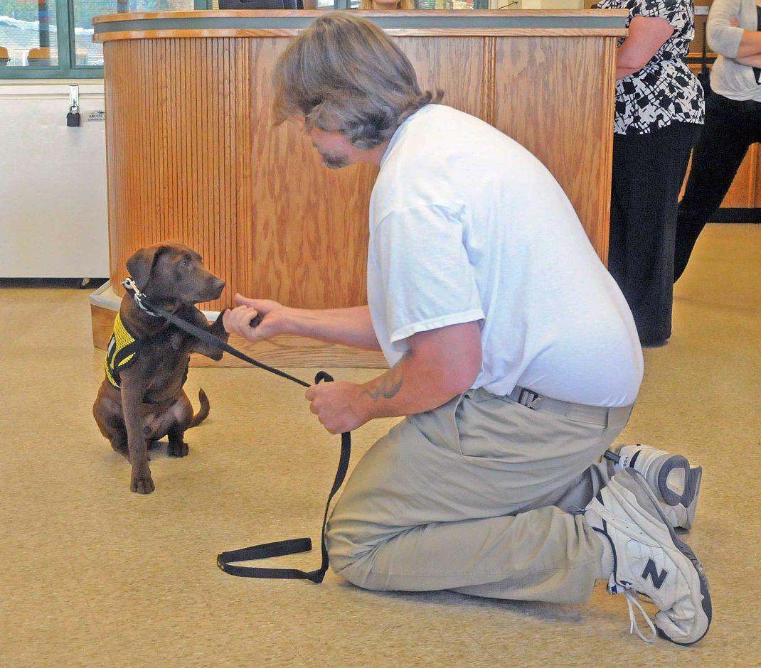 Dog Training Laredo