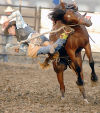 Price leapfrogs Smith and Scott, captures bronc riding title