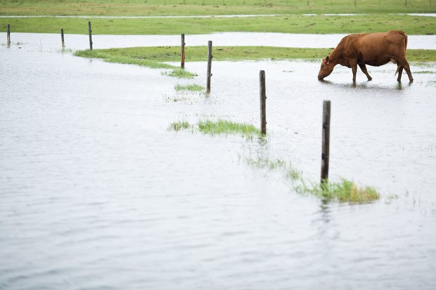 Bozeman Flooding Wednesday May 25, 2011