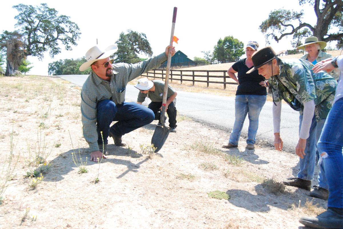Ranchers seek new ways to heal fire-scorched soil