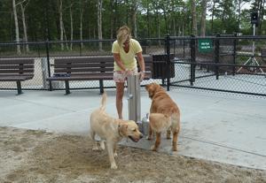 Mashpee Dog Park