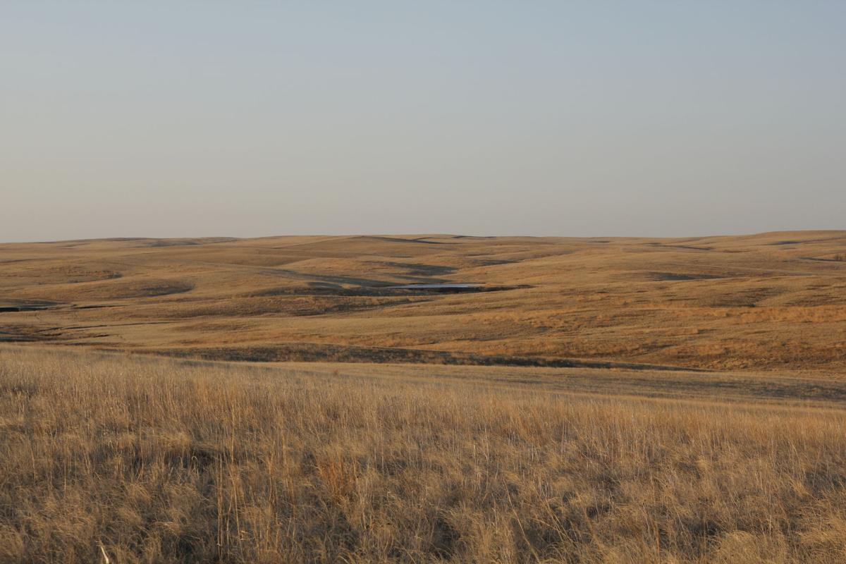 Sd gets 70 000 more crp acres local news stories for South dakota game fish and parks