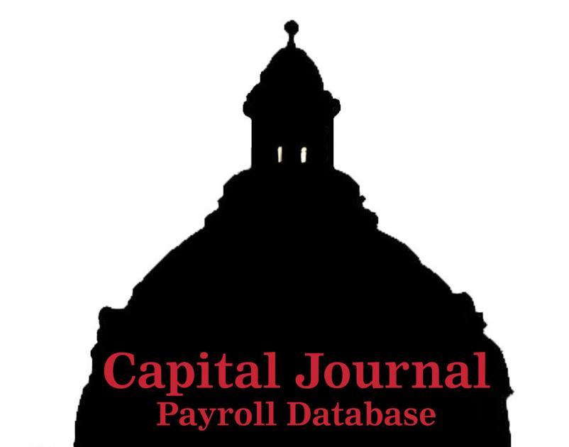 School District Salaries Access