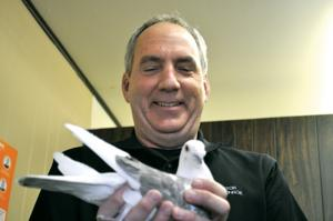 Pierre man trains homing pigeons as a hobby