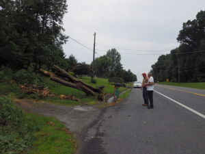 Storm damage in Fair Hill