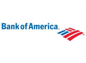 Bank of American adds veteran credit card executive to