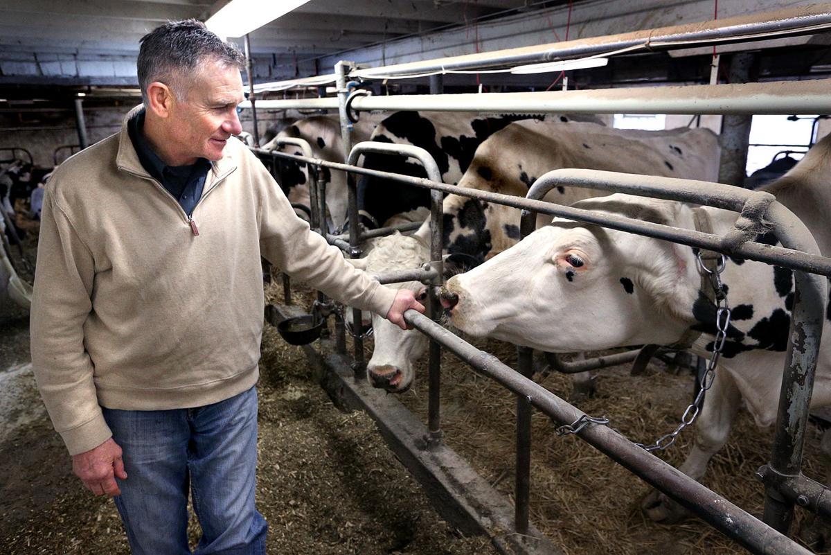 Uw Professor Expects A Better Year For Dairy Farmers