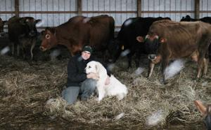 Clutts farm