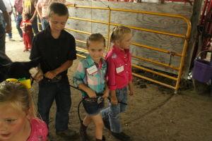 Barnyard Babies from the Benton County Fair