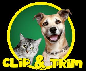 Clip & Trim