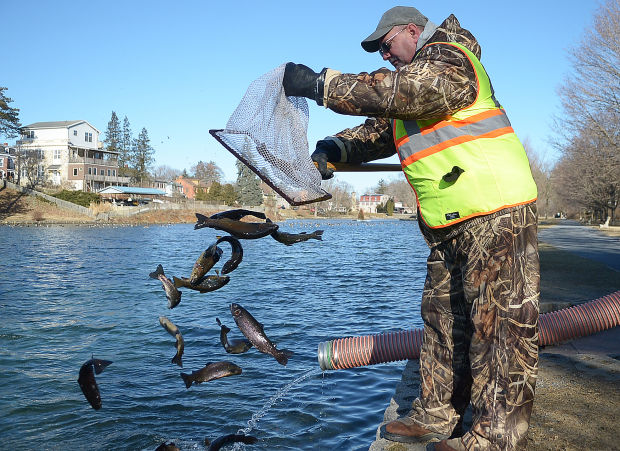 Trout season begins in midstate despite cold outdoors for Fish stocking ca