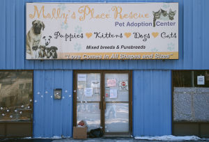 PA Department of Ag refuses kennel license request from Molly's Place in Hampton Township