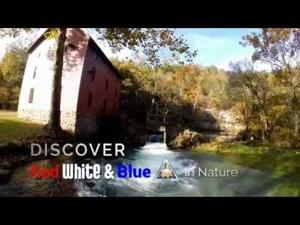 VIDEO: Discover Red, White and Blue in Nature