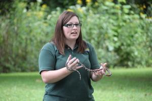 St. Francois State Park Nature Programs