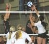 Lady Cards defeated in national tourney debut
