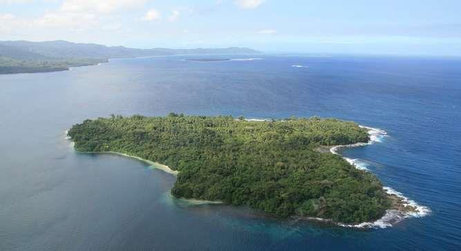 Lemur Island off Malekula on sale