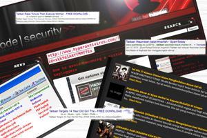 TVL Malware