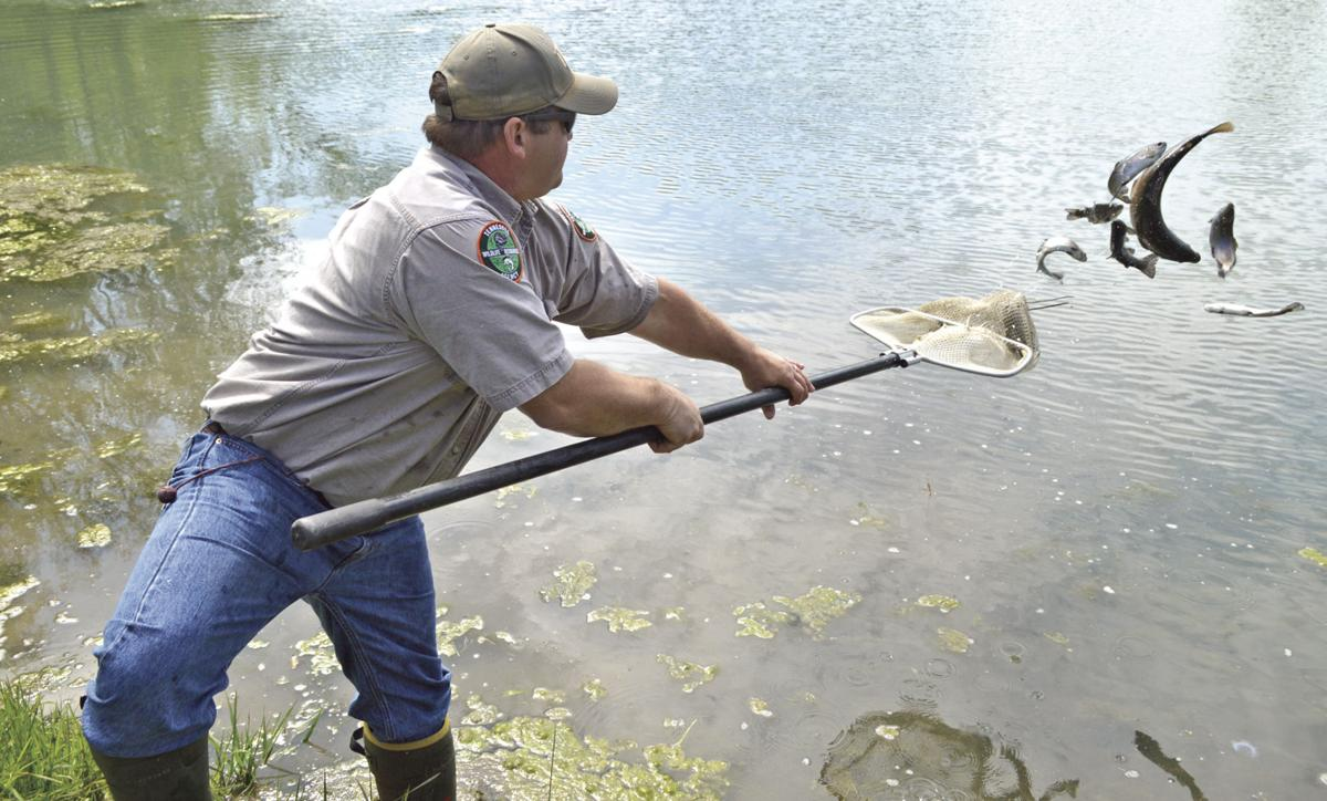 twra winter trout stocking scheduled sports
