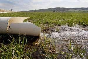 <p>Water flows from an irrigation pipe onto a Badger Pocket timothy hay field, Tuesday, April 20, 2015.</p>