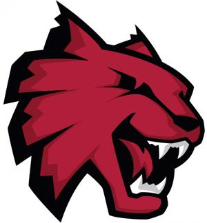 Wildcat Logo - New