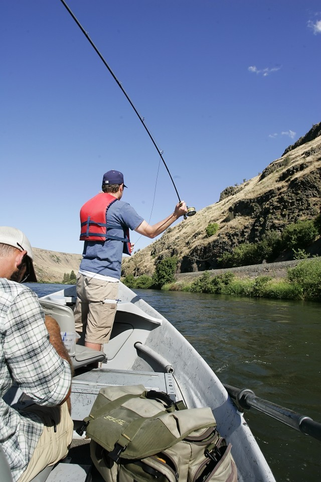 Yakima river provides great fishing boosts county 39 s for Chicago fly fishing