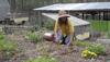 Permaculture Gardening Nacogdoches Magazine