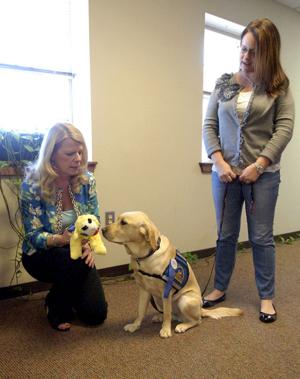 Helper, Therapy Dog