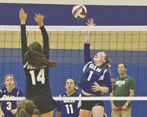 OLH, Harper and Fredericksburg volleyball - Daily Times: Promotions ...
