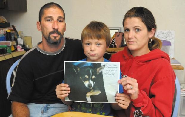 Family seeks return of stolen pets
