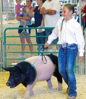 "<p class=""p1""><span class=""s1""><strong>Converse County 4-H member Tyne Loyd, 9, drives her hog Roxy through the show ring during showmanship Wednesday night at the Wyoming State Fairgrounds.</strong></span></p>"