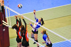 State Title Slips Past Lady Cats