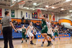 <p>Wheaton College Women's Basketball vs Wisconsin Lutheran (67-70)/ NCAA Playoffs, First Round</p>