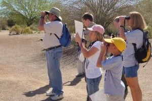 Gilbert Bird Walk