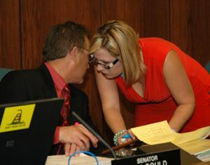 Andy Biggs, Kyrsten Sinema
