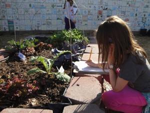 Broadmor Elementary School Garden