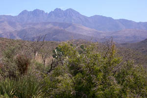 Four Peaks