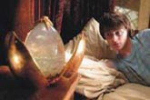 Harry's 'Goblet' runneth over with hormones