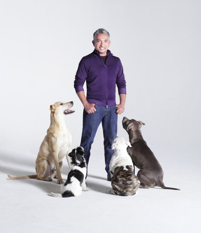 Cesar Milan