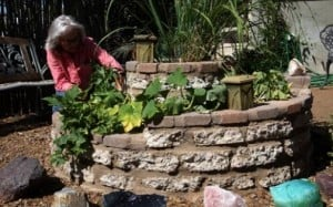 As grocery costs rise, gardeners grow own food