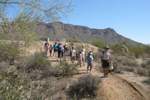 <p>Ranger Brennan Basler leads home-schooled children on a nature walk at Usery Mountain Regional Park in Mesa.</p>
